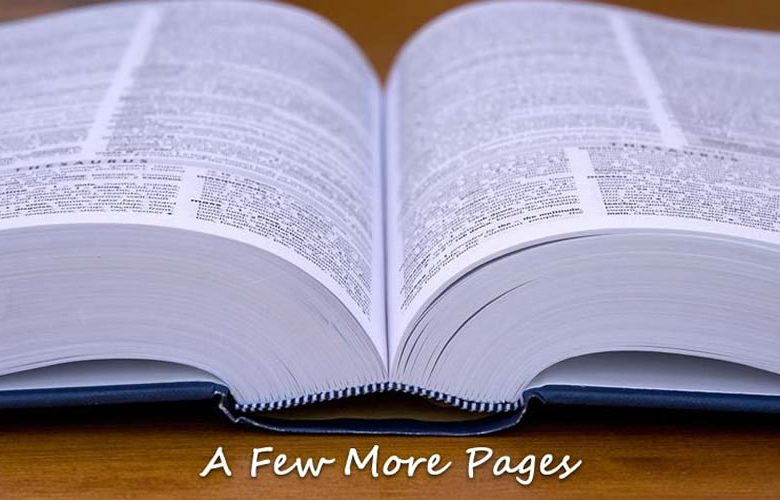 A Few More Pages Blog